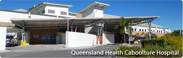 qldhealthcasestudypage